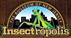 Insectropolis- The Bugseum of New Jersey